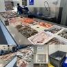 Industrieel scherfijsmachines 3/4 tot 12 ton Scherfijs per 24 uur